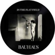 BAUHAUS - in the flat field Picture-LP