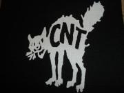 CNT-Cat
