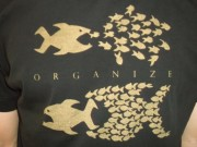 Organize Fische (FAIRTRADE)
