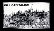 kill capitalism before it kill the planet